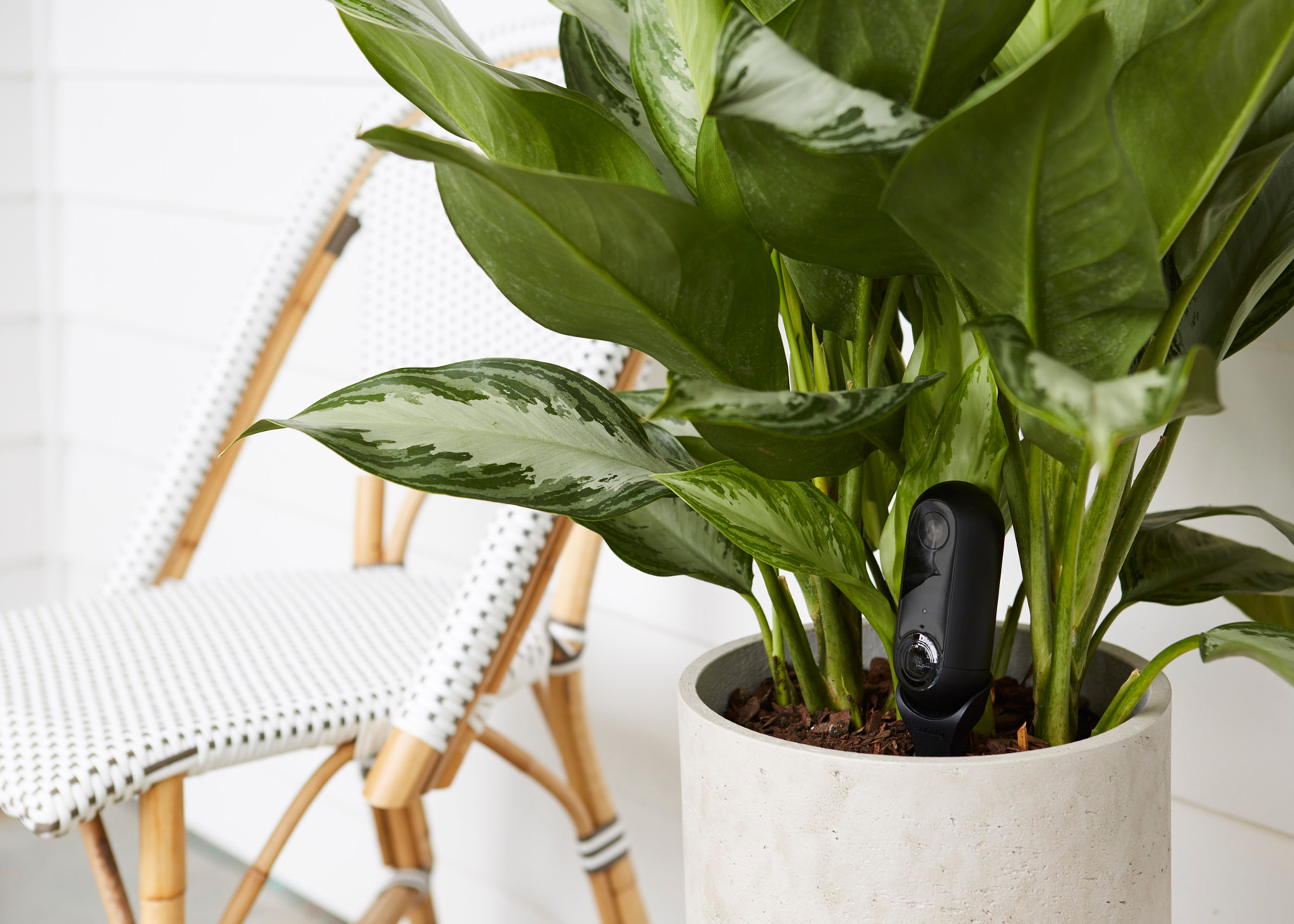 Eying Nest, Canary Launches An Outdoor Security Camera Aimed At Businesses