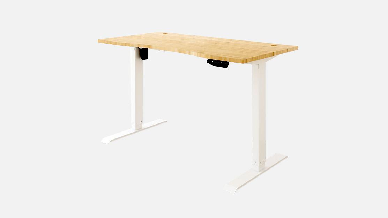 Flexispot Kana Standing Desk