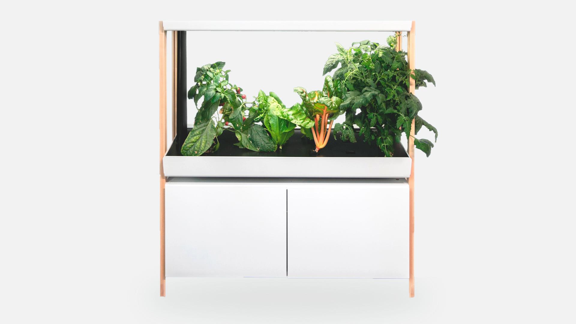 Rise Indoor Garden