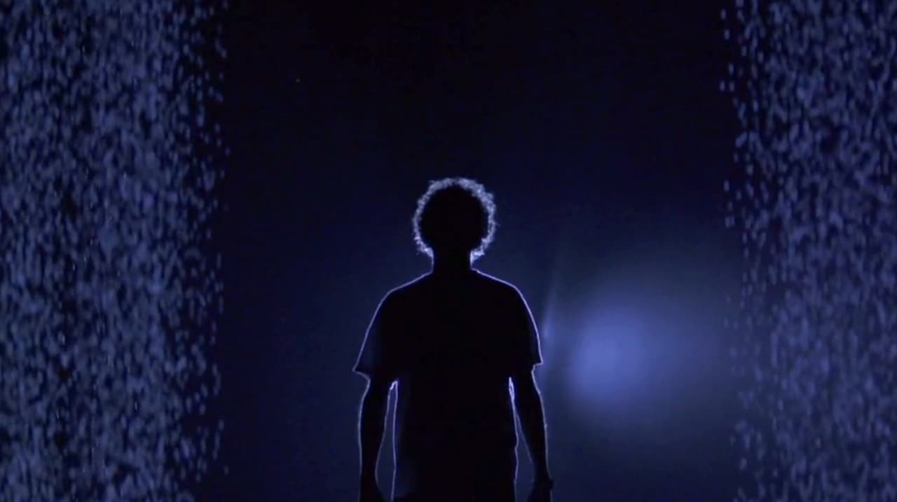 How Do You Enjoy A Downpour Without Getting Wet? Welcome To The Rain Room
