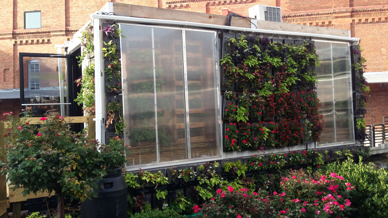 Pick Your Own Food At This Vertical Farm Built From Shipping Containers