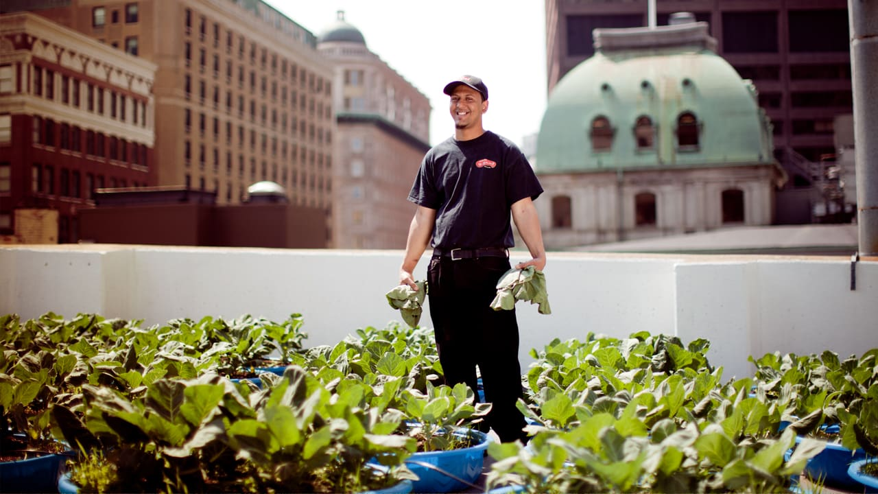 A Fast Food Chain's Quest To Turn Gardening Into Good Business