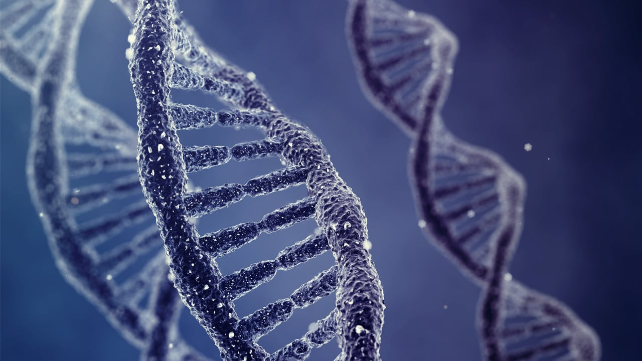A New Programming Language That Can Shape Our DNA