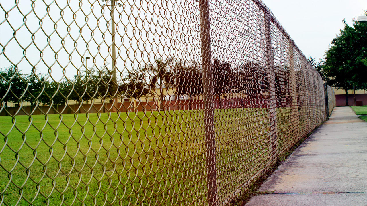 when neighbors tore down their fences incredible things happened