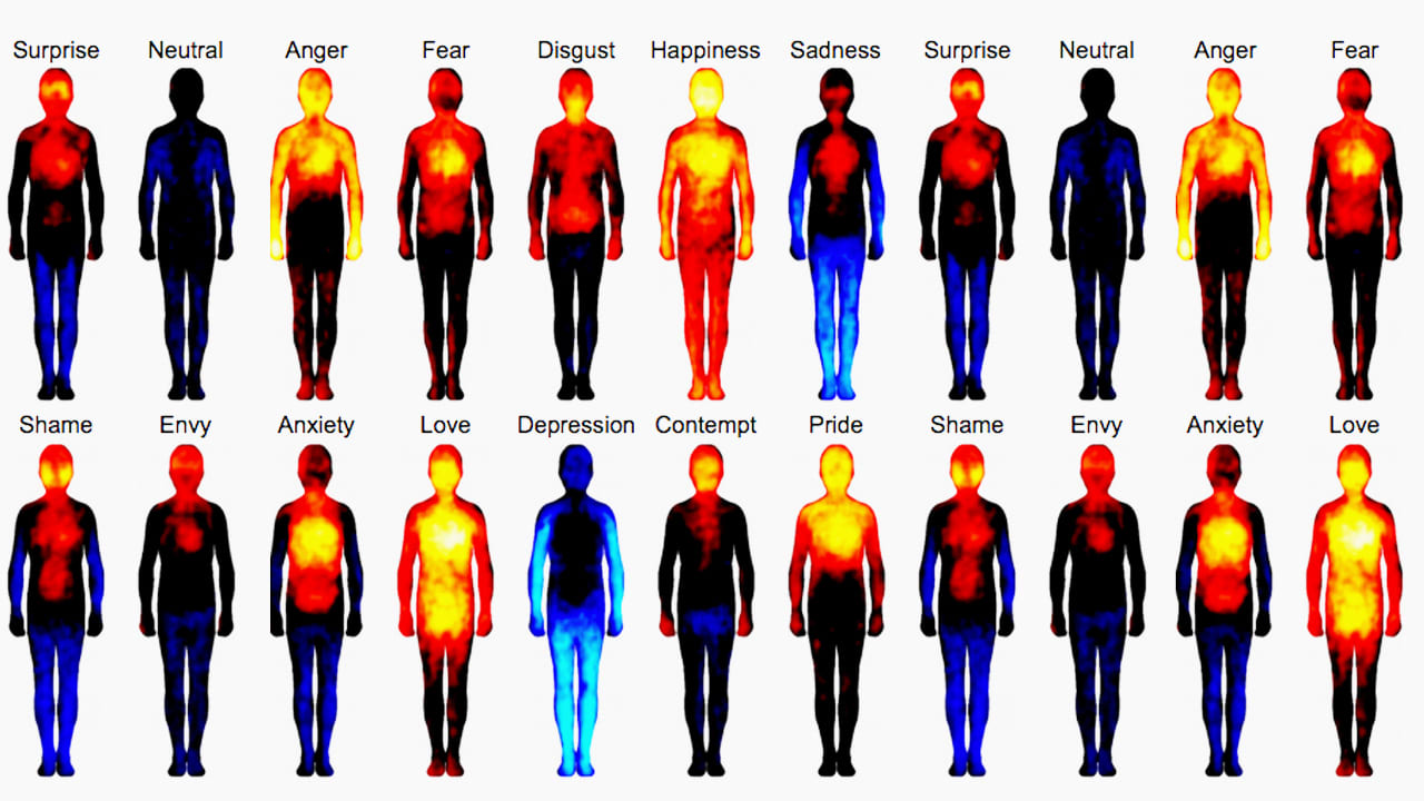An Atlas Of The Human Body That Maps Where We Feel Emotions