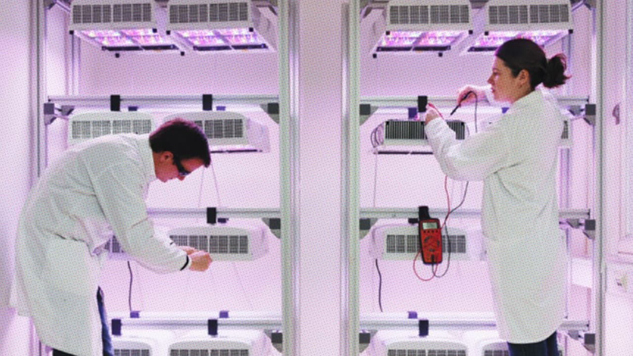 In A Shipping Container In Antarctica, We're Learning How To Grow Veggies on Mars
