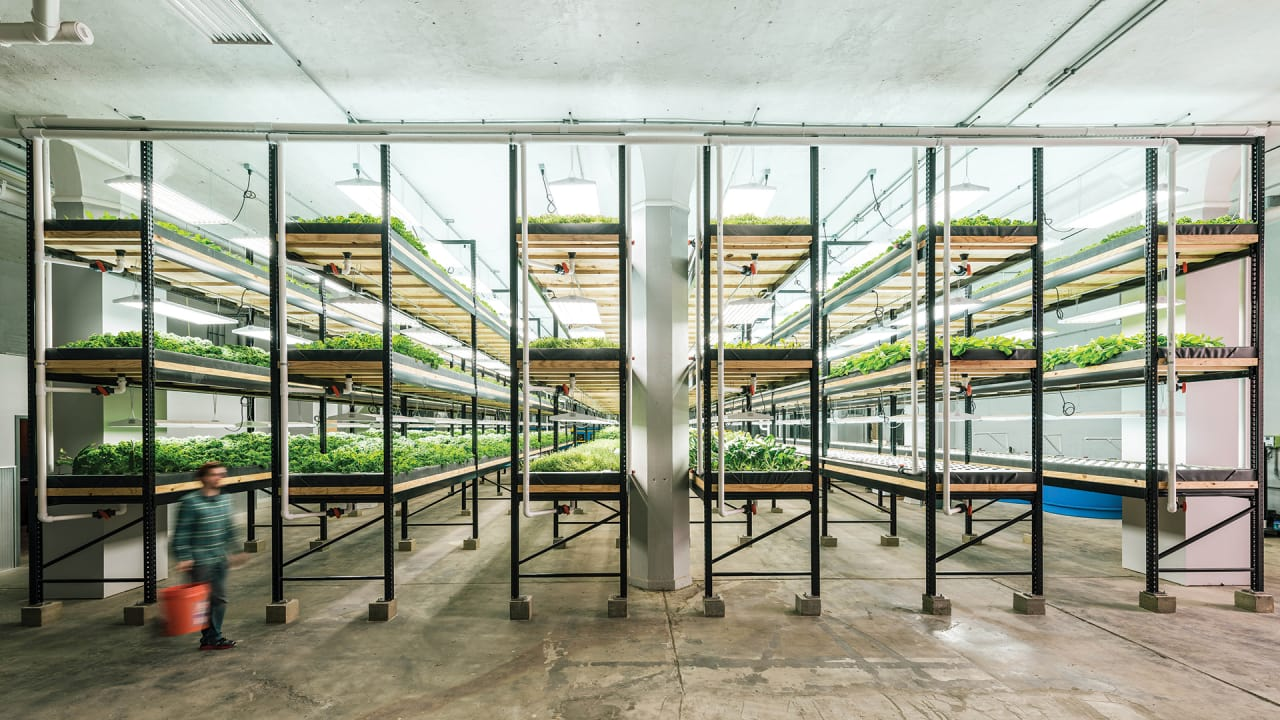 This Old Factory–Now Full Of Fish And Kale–Is Revitalizing A Neighborhood