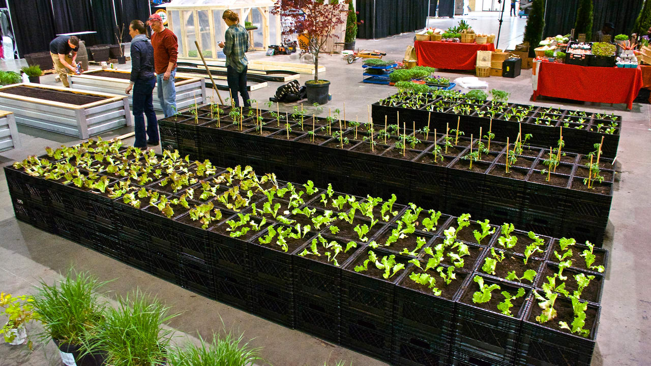 this modular urban farm to pop up on vacant lots and then move on - Milk Crate Garden