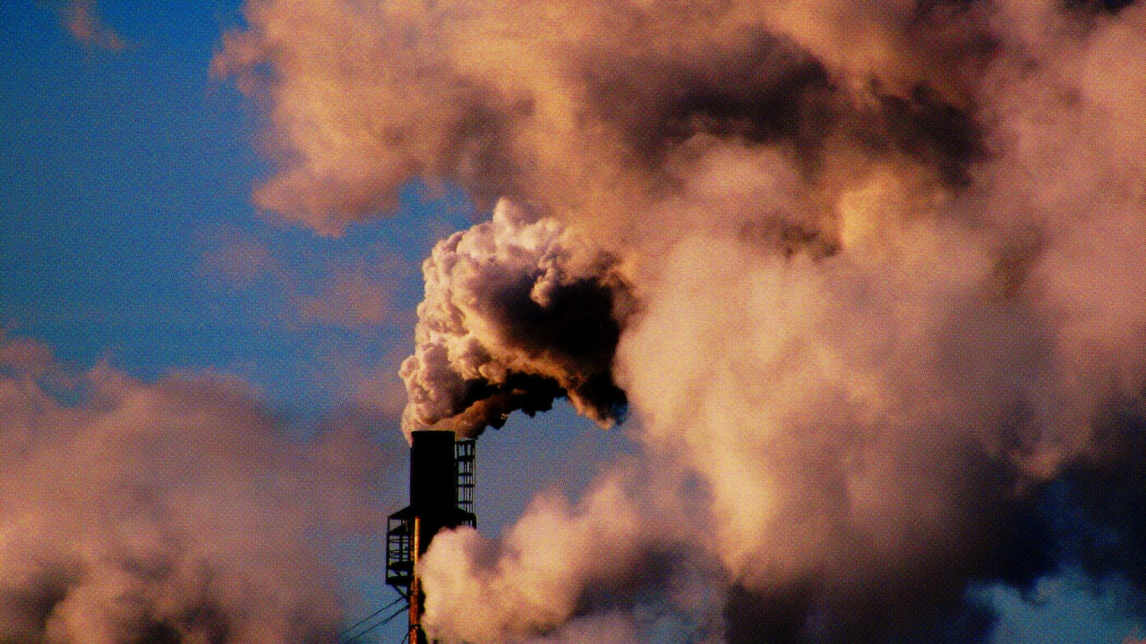 Air Pollution Is Lowering The IQs–And Earning Potential–Of New York City Children