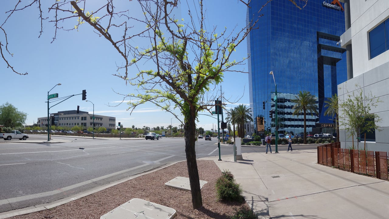 Phoenix Is Pulling Off An Urban Miracle: Transforming Into A Walkable City