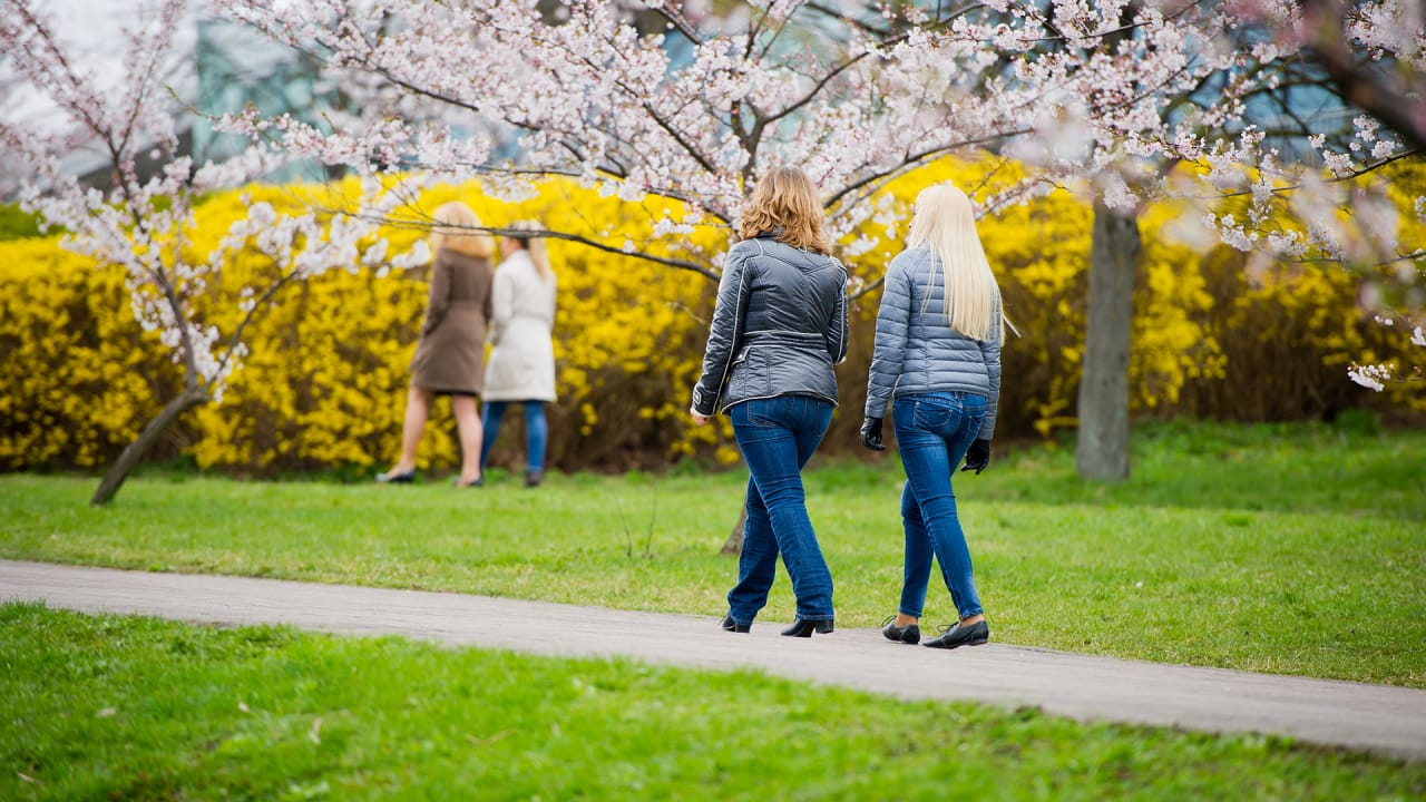 Now Doctors Are Prescribing Walks In The Park To Get Us Off Our Butts