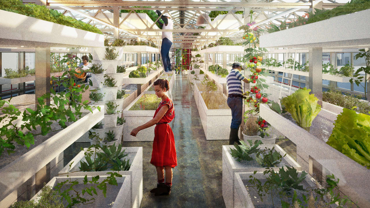 Build Your Own Full-Scale Rooftop Farming Operation, With This Easy Kit