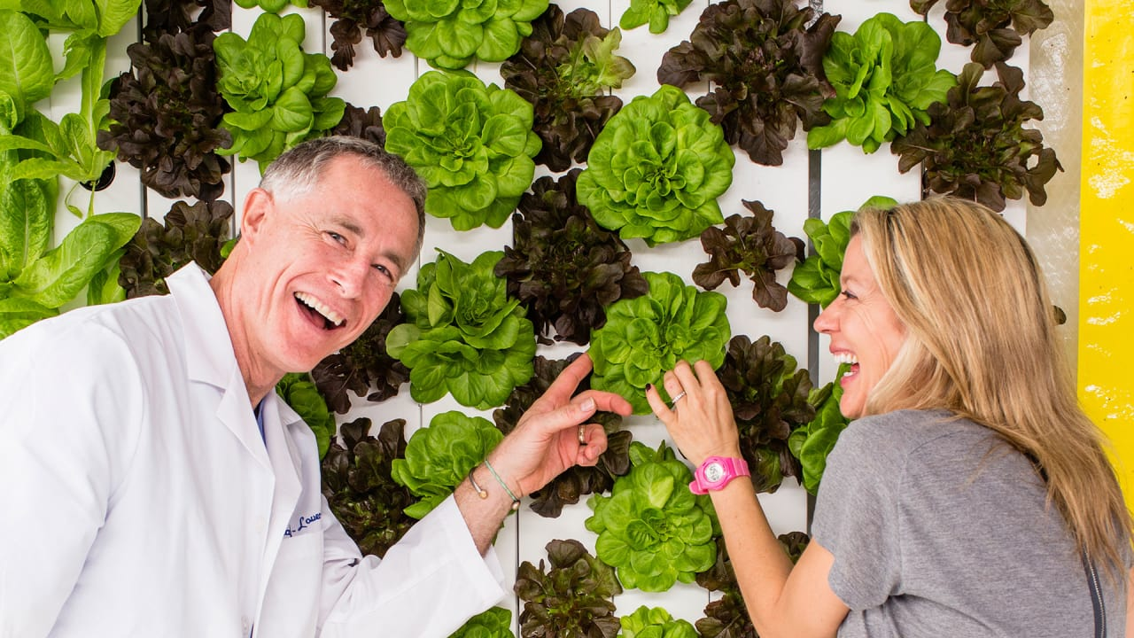Grow Kale Inside Shipping Containers, With This Hipster Aquaponics Design