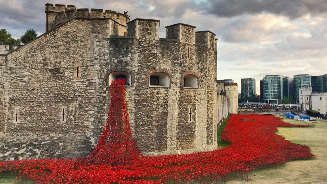 The Tower of London Pours 888,246 Poppies From A Window To Honor WWI Dead