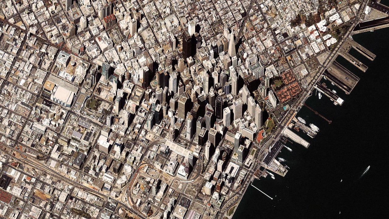 How A City Changes The Evolution Of All The Nature Around It