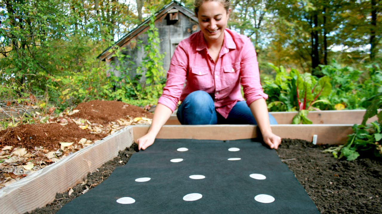 This Startup Will Ship You A Fully Customized Vegetable Garden For Your Backyard