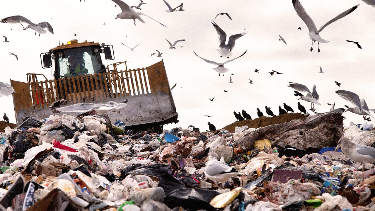 This Startup Wants To Reinvent How Businesses Deal With Trash