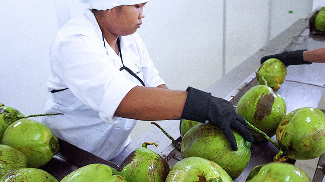Can This Startup Help Lead The Booming Coconut Water Industry To Sustainability?