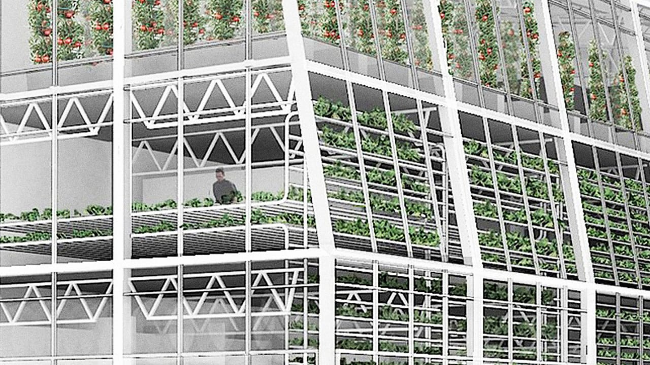 Vacant Lot In Wyoming Will Become One Of World's First Vertical Farms
