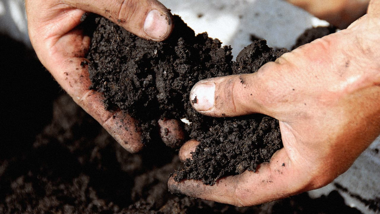 These Scientists Want Your Dirt, All In The Name Of Drug Research