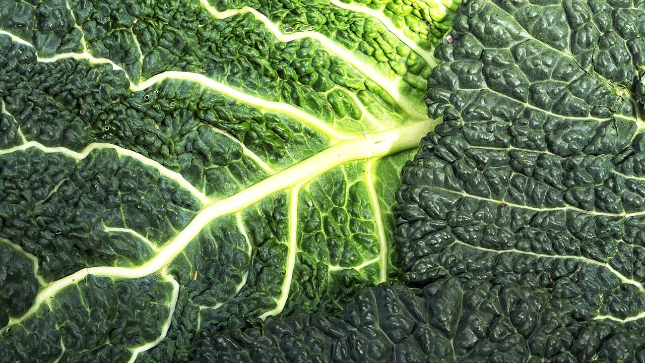 How much kale should you eat