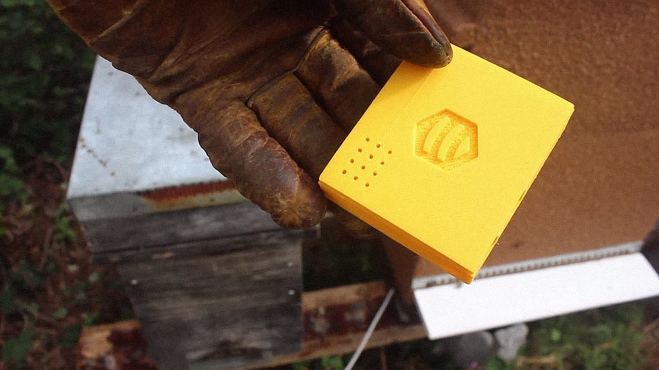 To Keep Bees Alive, The Beehive Gets Smart And Connected