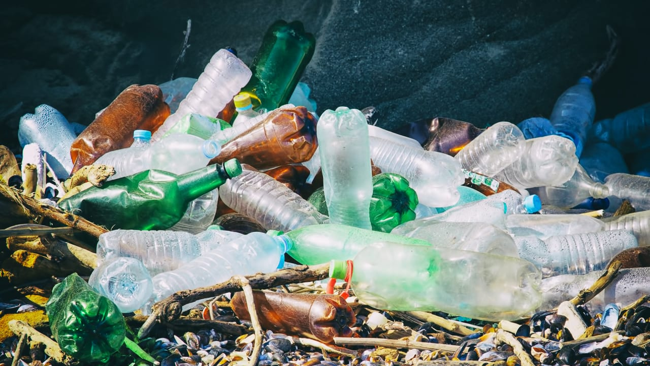 Most Of The Plastic In The Ocean Comes From Just A Few Polluting Countries
