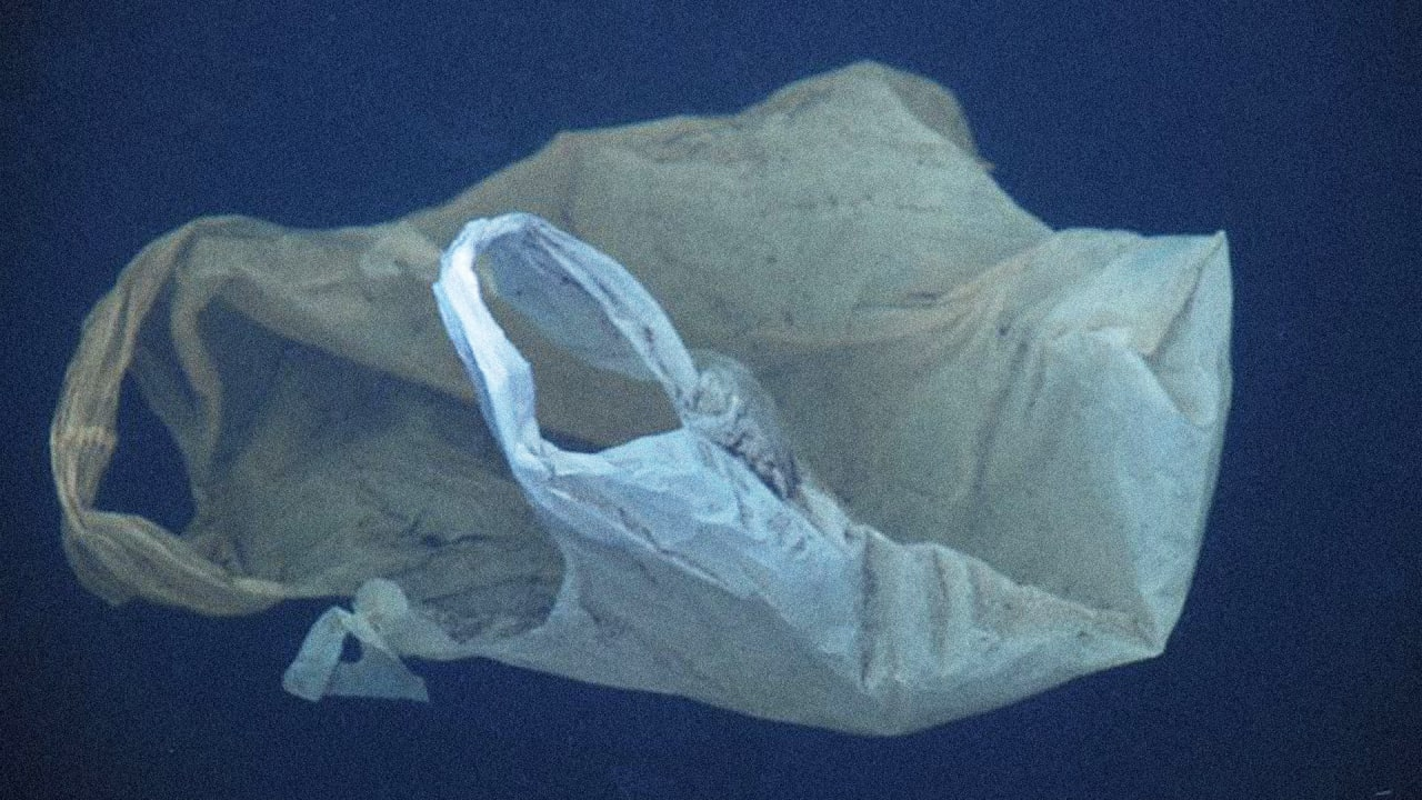 Scotland's Plastic Bag Ban Saved 650 Million Bags In Its First Year