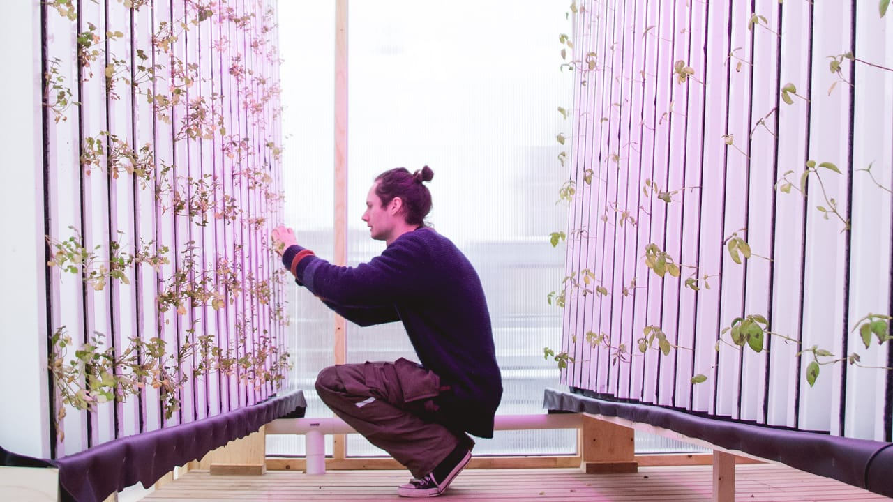 This Flatpack 2-Story Farm Is Designed To Pop Up On Empty Lots