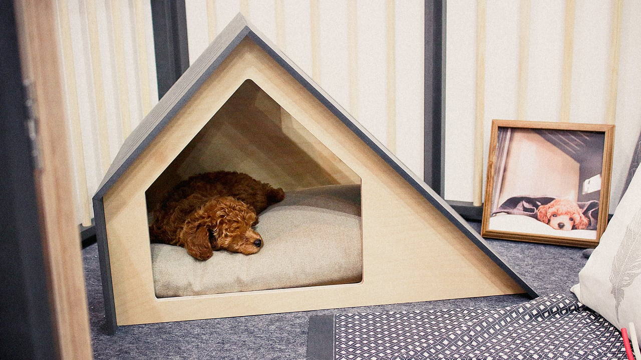 the most beautiful dog houses come from this south korean company - Beautiful Dog Houses