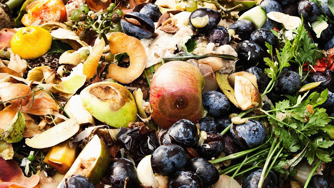 Best Apps For Food Waste Innovation