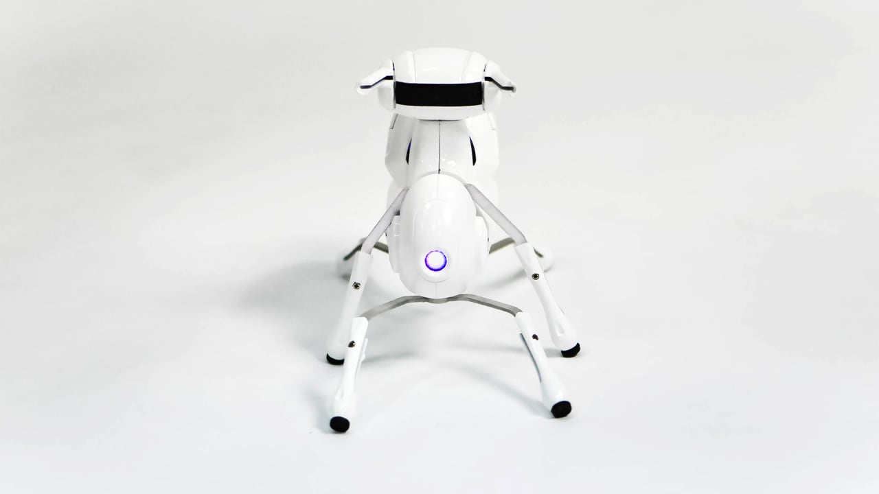 This Cute Robot Teaches Pre-Schoolers To Code