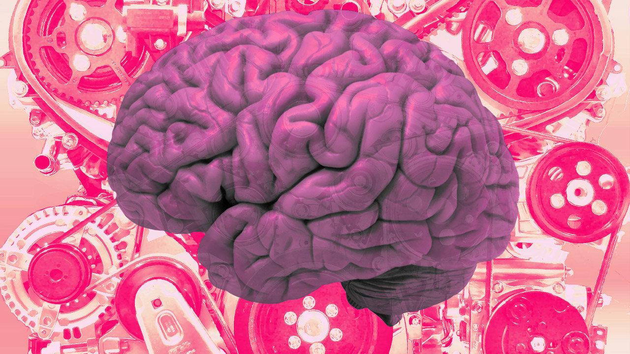 Картинка мозги с надписью мозги для конкурса