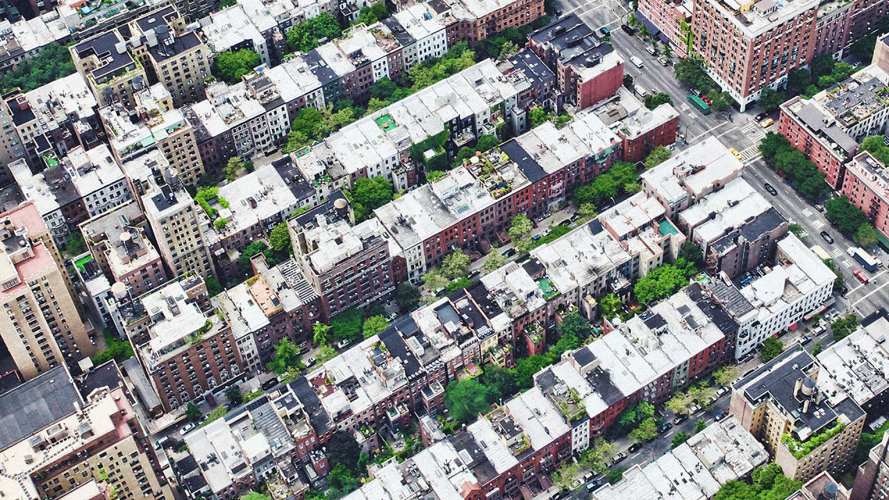 Treepedia Maps Your City\'s Trees, Street By Street