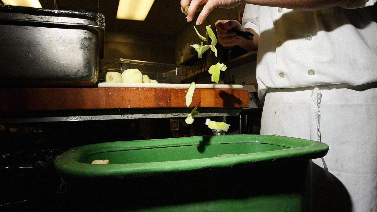 How Did Denmark Spark Its Miraculous Food-Waste Reduction?