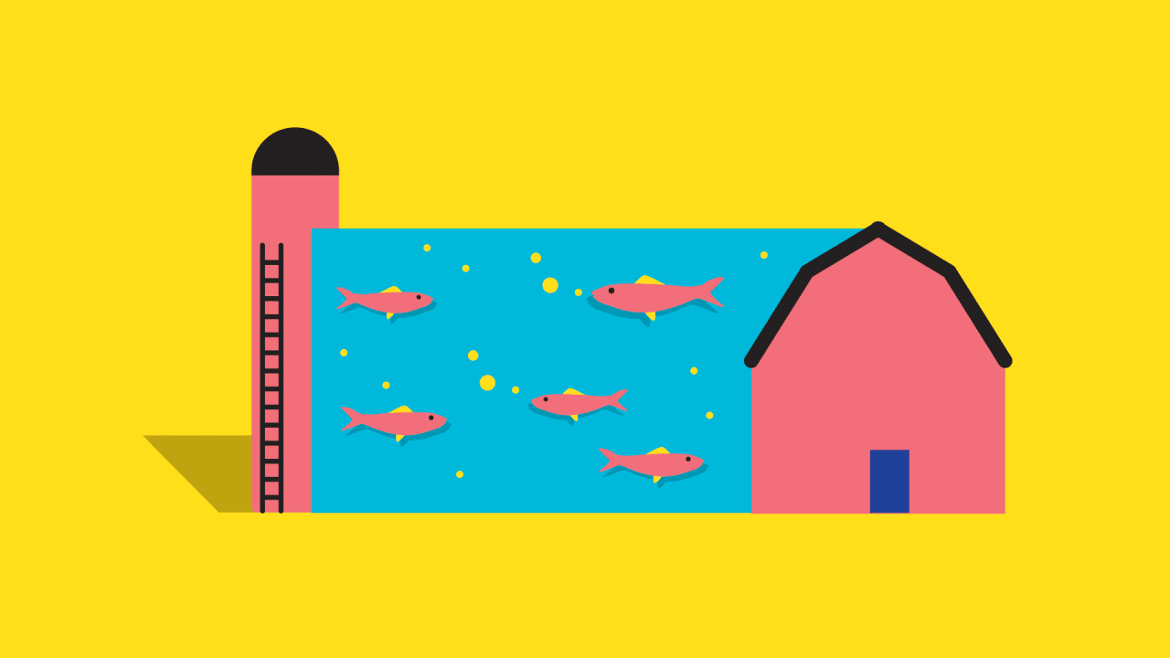 Replacing Farms With Fish Farms: The Odd Solution To Both Hunger And C