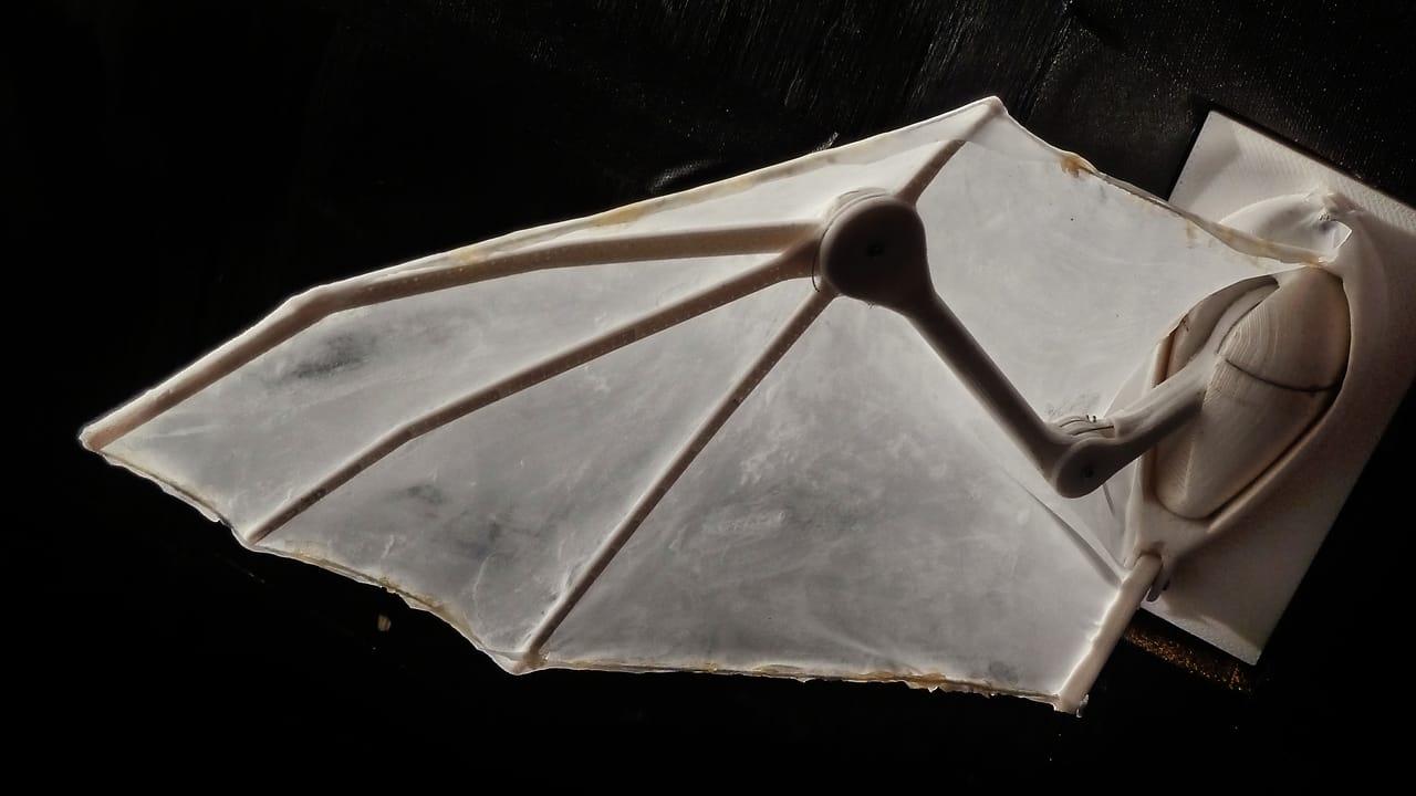 """Scientists 3-D Print A 25-Joint """"Robatic"""" Bat Wing"""