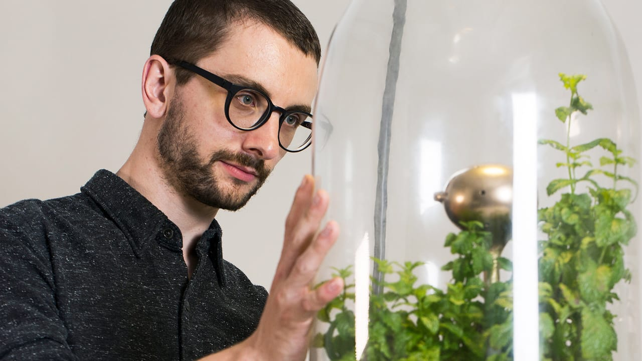 This Terrarium Filters Dirty Water By Mimicking The Amazon Biosphere