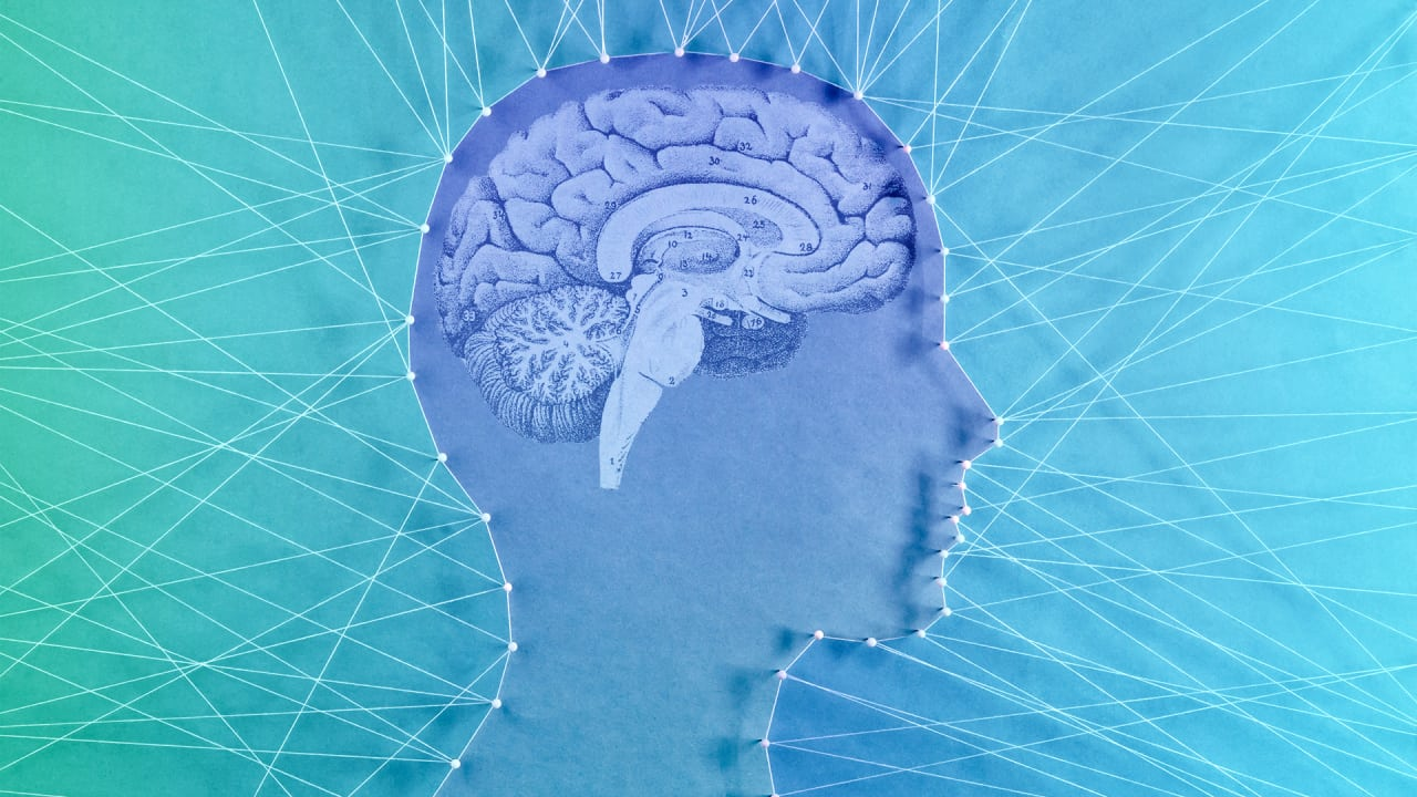 Why your Brain Clings to False Beliefs (Even When it Knows Better)