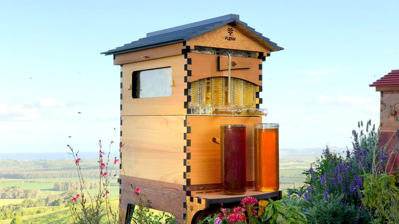 Backyard Bee Hive this easy-to-use beehive is bringing honey to backyards