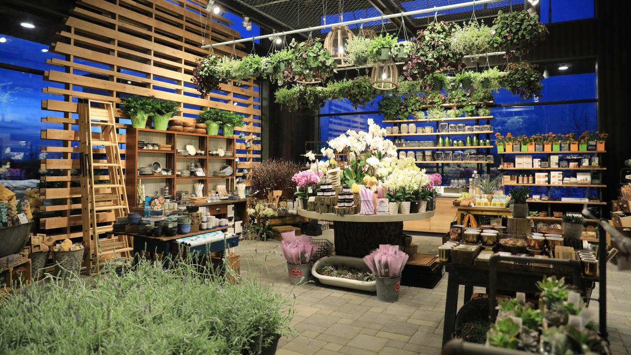 Whole Foods Launches A Wellness Inspired Home Goods Shop