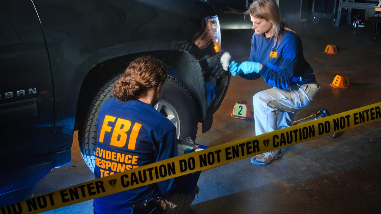 Think you're not FBI agent material? The FBI disagrees