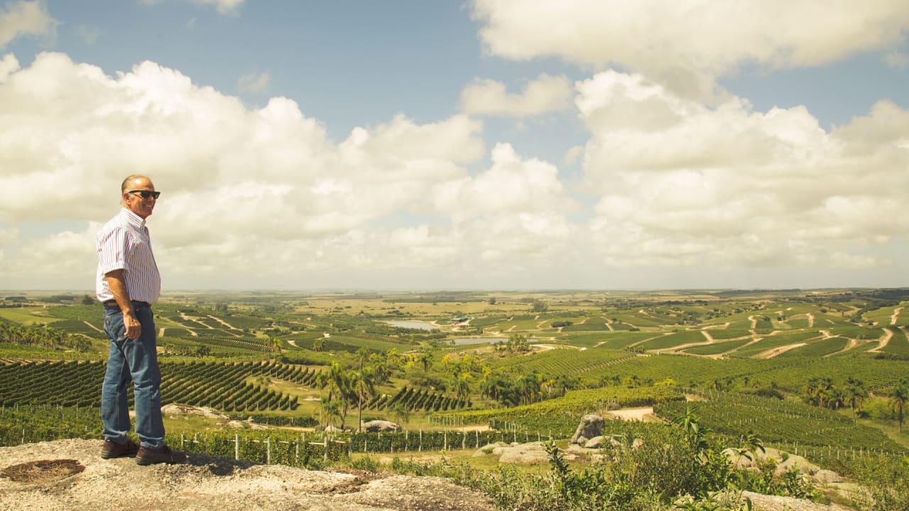 Winemaker Alejandro Bulgheroni wants to transform fracking