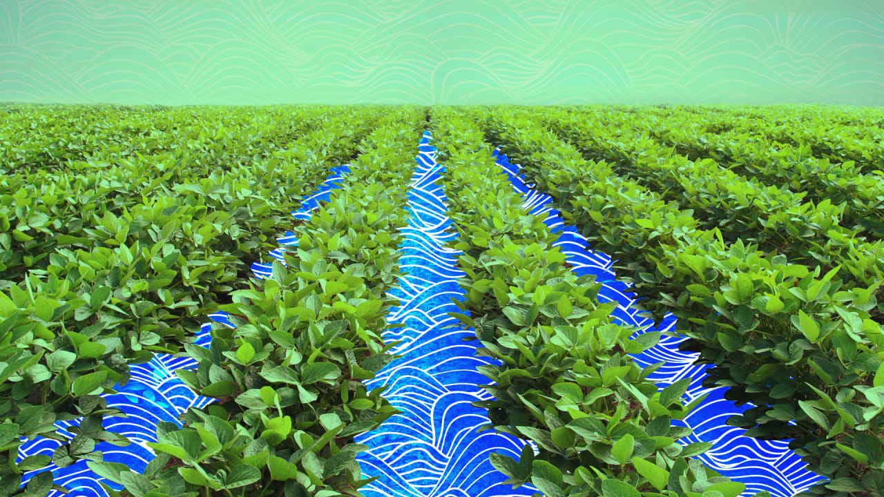 fastcompany.com - The shape of water: How agtech is making irrigation more efficient