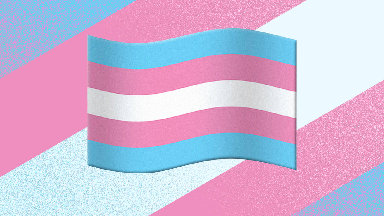 QnA VBage Emoji keep getting more inclusive. So why is there no trans pride flag?