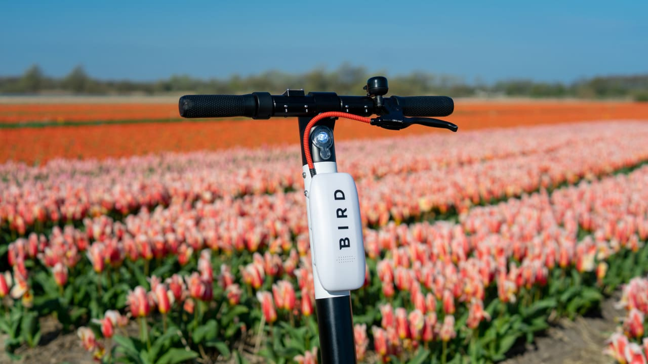 Bird announces sturdier scooters and carbon offsets
