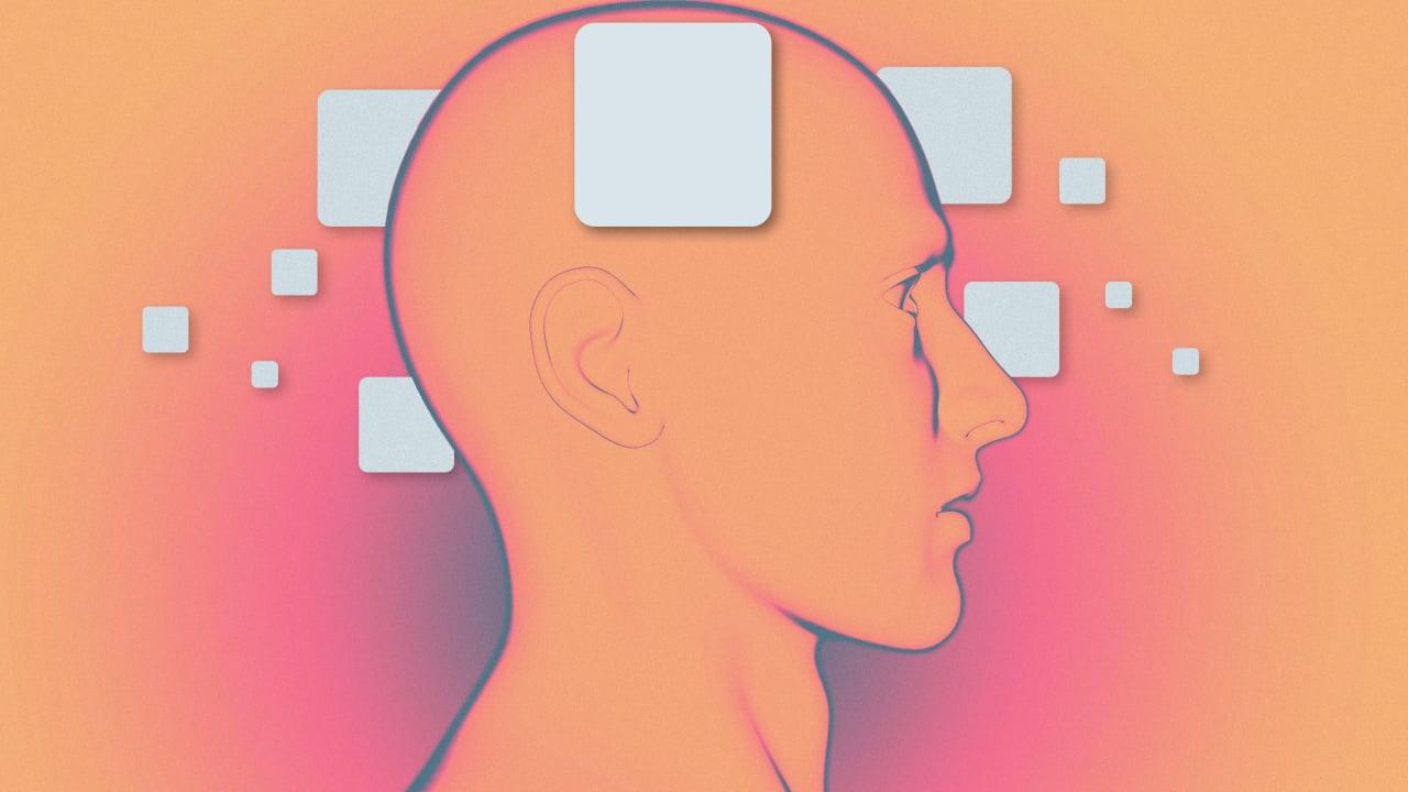 Brain cover image