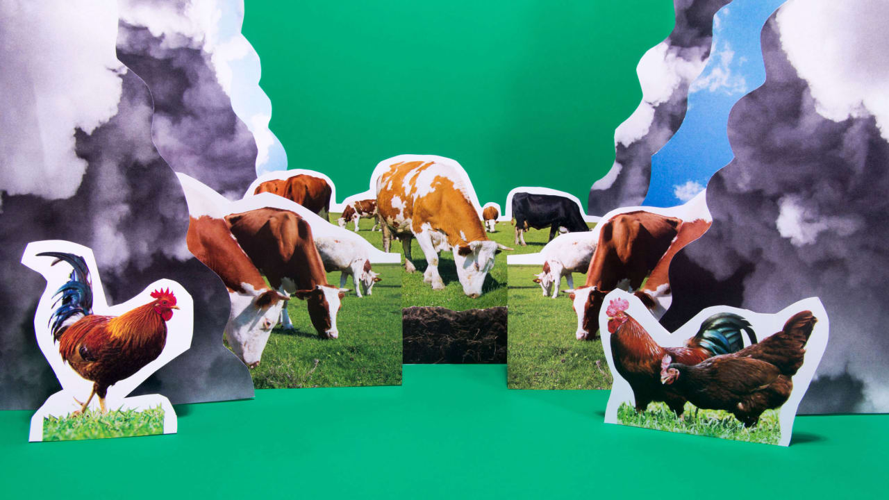 Is it possible to raise a carbon-neutral cow?