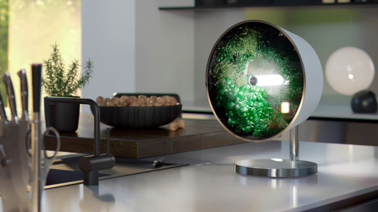 This brilliant hydroponic system puts a whole garden on your countertop