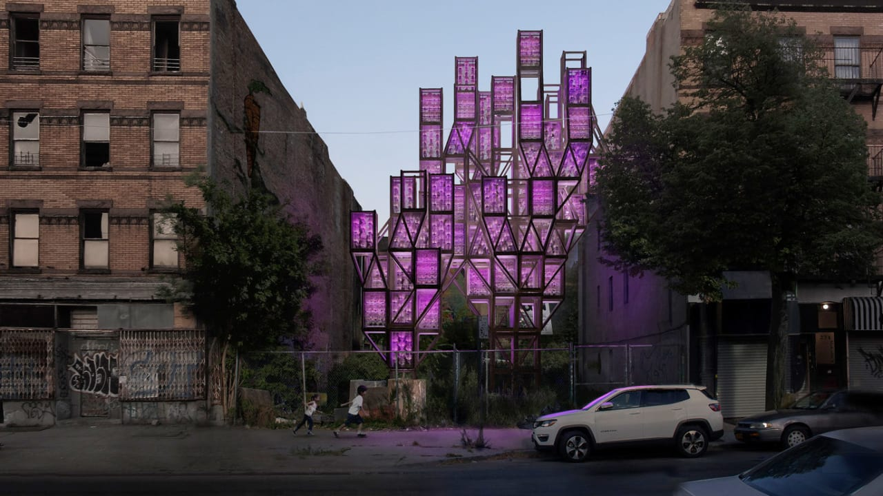 These vertical farms could turn Brooklyn into an agricultural oasis